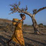 Gli orrori della guerra nascosta. «A otto anni abusate nel Tigrai»